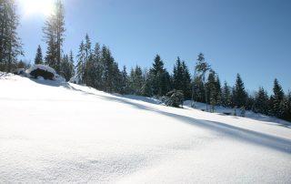 Sonnige Winterlandschaft in Kirchberg in Tirol