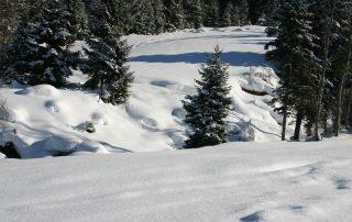 Verschneite Winterlandschaft in Kirchberg in Tirol