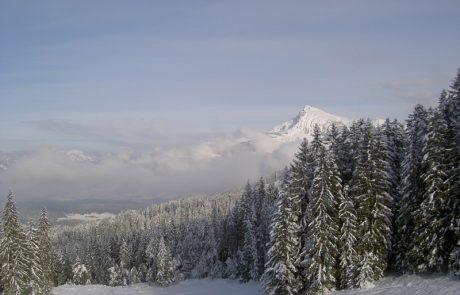 Winterlandschaft mit Nebelschwaden in Kirchberg in Tirol
