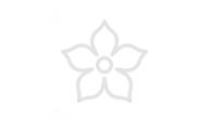 Icon Blume